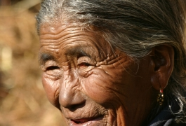 A-Local-Old-Woman