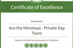 Certificate Of Excellence-14