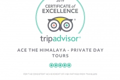 2019-TripAdvisor-Certificate-of-Excellence-Ace-the-Himalaya