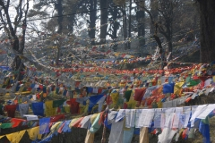 Buddhist-Prayer-Flags