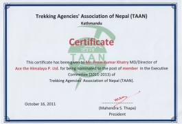 Certificate By TAAN for being executive member