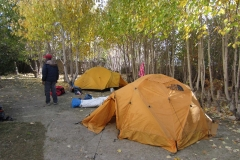 A-Tented-Camp