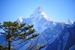 Hotel-Everest-View-18